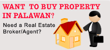 palawan real estate agent