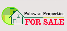 palawan propoerties for sale